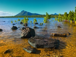 mauritius_flickr_arnaud-bertrande-photographie-resize.jpg