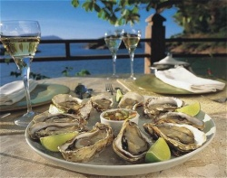 pontasantacatarinaoysters-resize.jpg