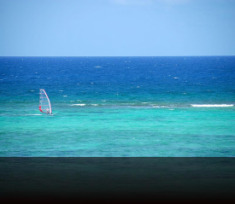 cayman-windsurf-edit.jpg