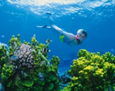 great_barrier_reef_adventure-edit.jpg