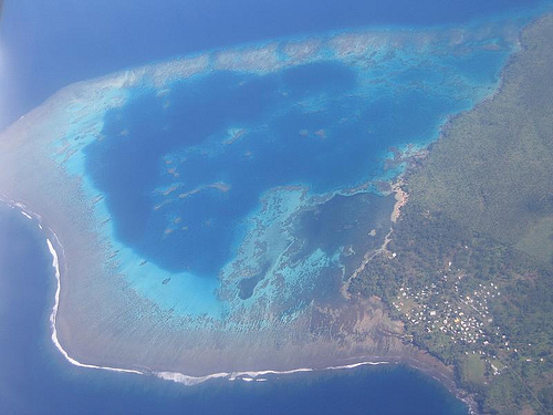 Fiji-reef