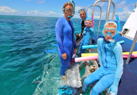 great_barrier_reef_with_kids_2