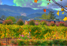Big Gay Wine Train Napa
