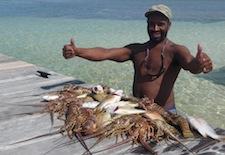 Lobsters in Belize near Ambergris Caye