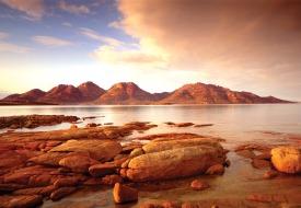 Tasmania-saffire