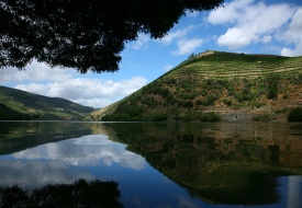 Aquapura Douro Valley Ll Resize