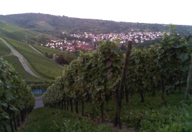 Stuttgart Wine Region