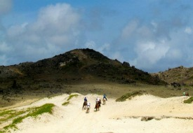 Horseback riding in Aruba
