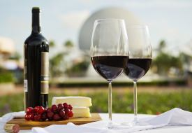 Walt-disney-world-resort-wine-blog