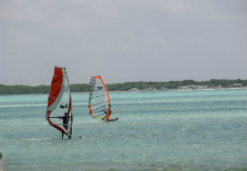 Bonaire Windsurfing in Lac Bay