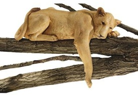 Lioness SkyMall Lion