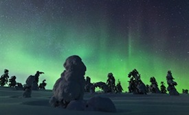northern lights and snow