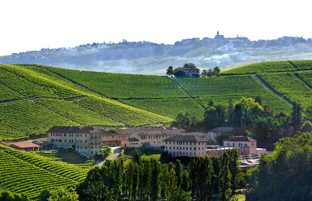 What to do in Piedmont