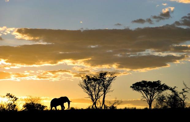 Africa_original