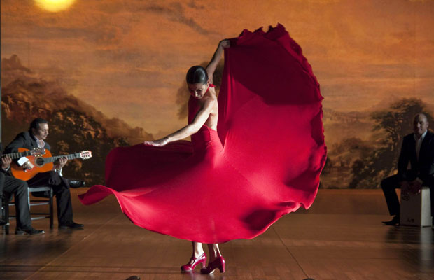 Flamenco-flamenco