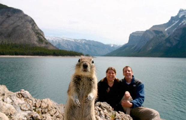 Vacation Photobomb