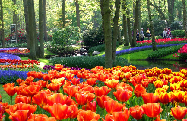 Garden-keukenhof-lisse