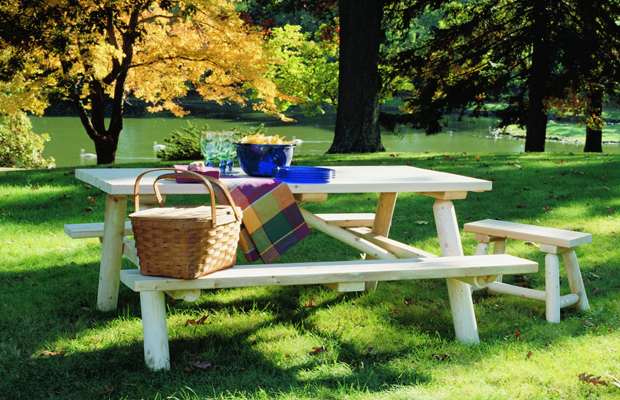 10 Places to Picnic in the US