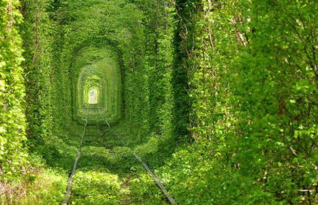 Tunnel-of-love1