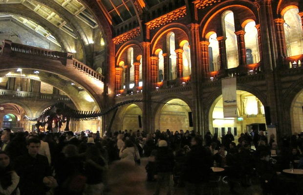 Lates, Natural History Museum