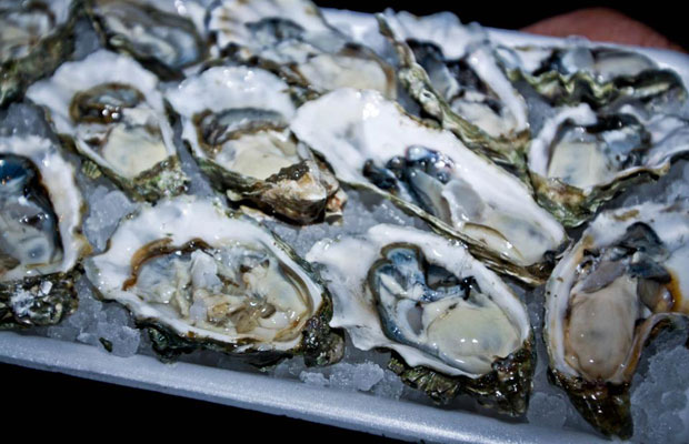 New Orleans Oyster Spots