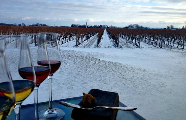 Ice Wine Tasting, Ottawa