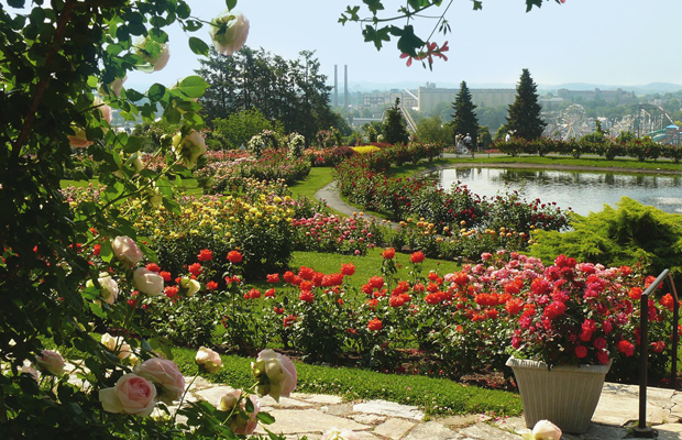 Hershey-gardens-facebook-hersheyharrisburg-620-2