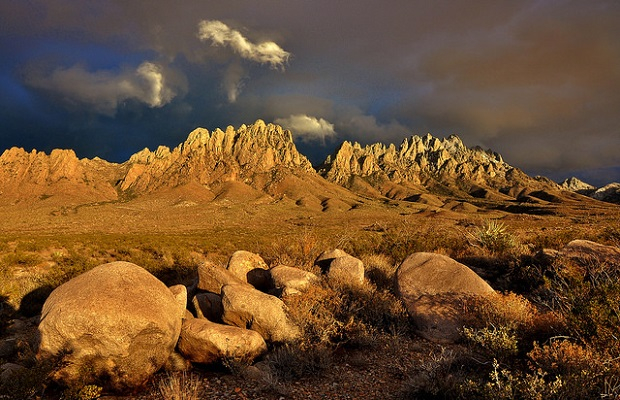 Las-cruces-blm-new-mexico