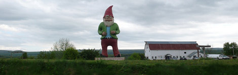 gnome chompsky, new york