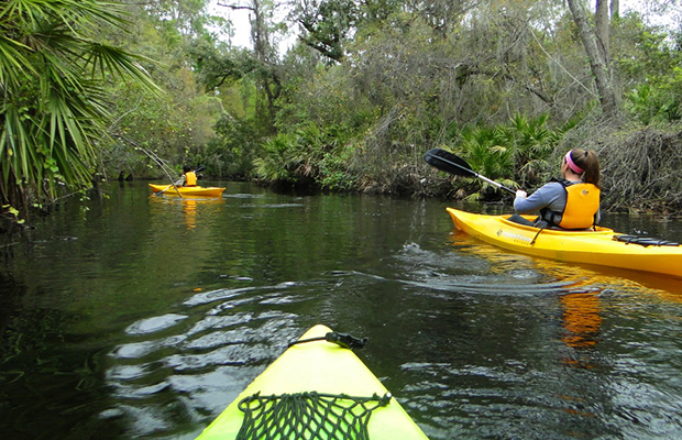 kayaking on shingle creek in kissimmee, florida