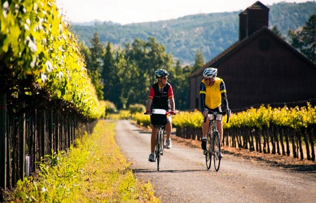 BWCI-winecountry-biking-11