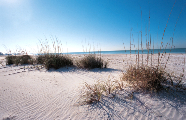 Dunes at Bean Point on Anna Maria Island, Florida