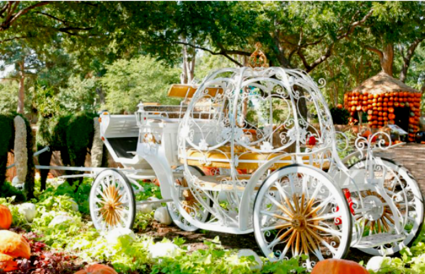 Cinderella's Carriage at the Dallas Aboretum