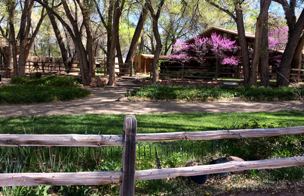 Old Town Farm, which hosts weekend bike-in coffees and is a stop on the Bosque Trail tour