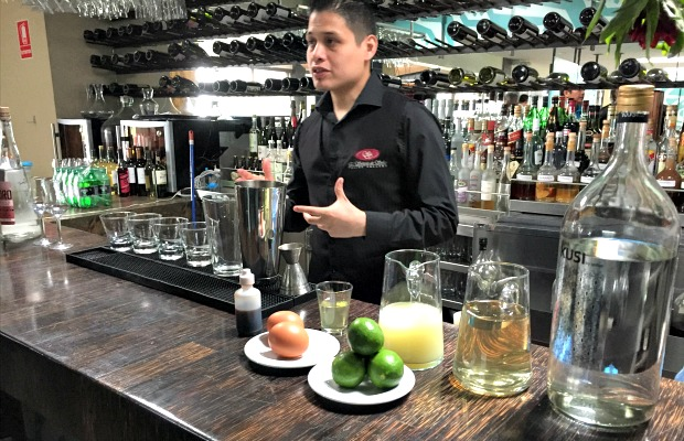 Peru - Bartender Preparing Pisco Sours - 620x400