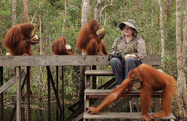 Dr. Birute Mary Galdikas & Orangutans / copyright Orangutang Foundation International