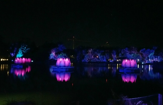 Rivers of Light at Disney's Animal Kingdom in Florida