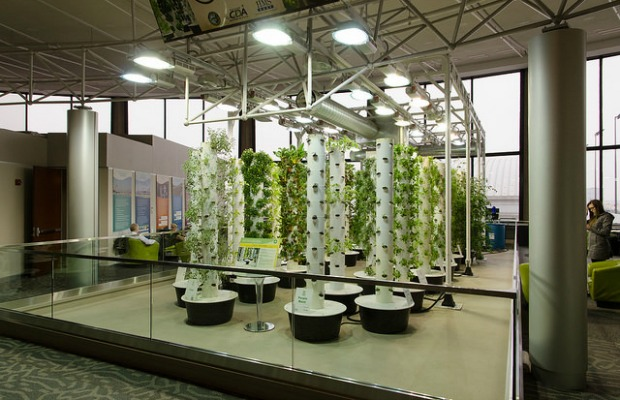 Aeroponic garden at Chicago O'Hare Airport in Illinois