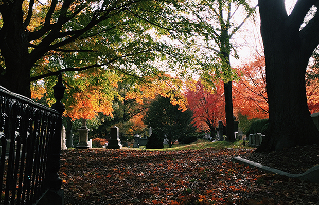 Mount Auburn Cemetery in Boston - Christine Wei
