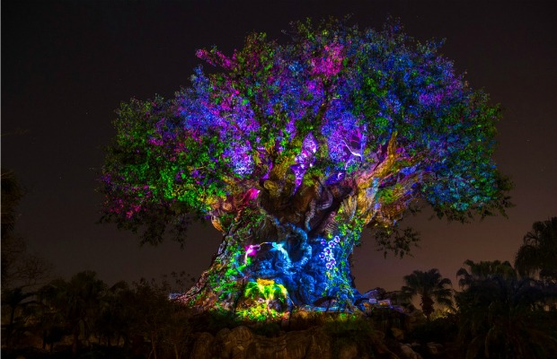 Tree of Life Awakens at Disney's Animal Kingdom in Florida