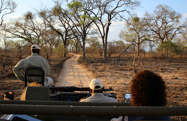South Africa Safari/Christina Garofalo